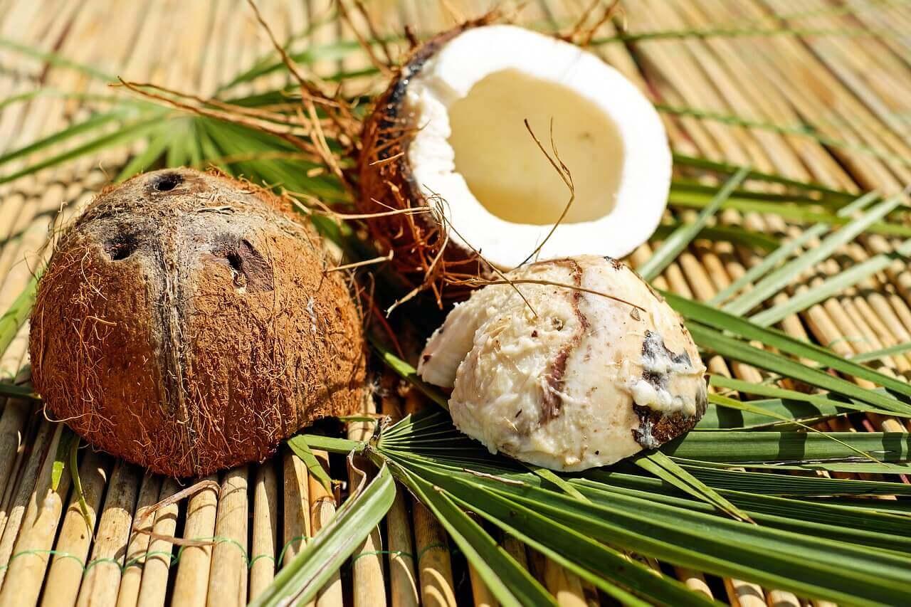 Pedaços de coco
