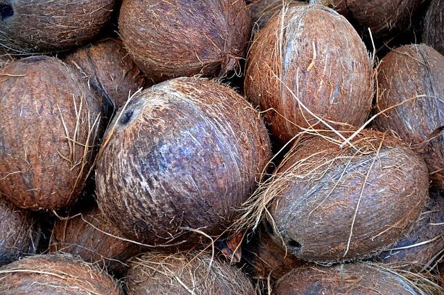 Vários cocos